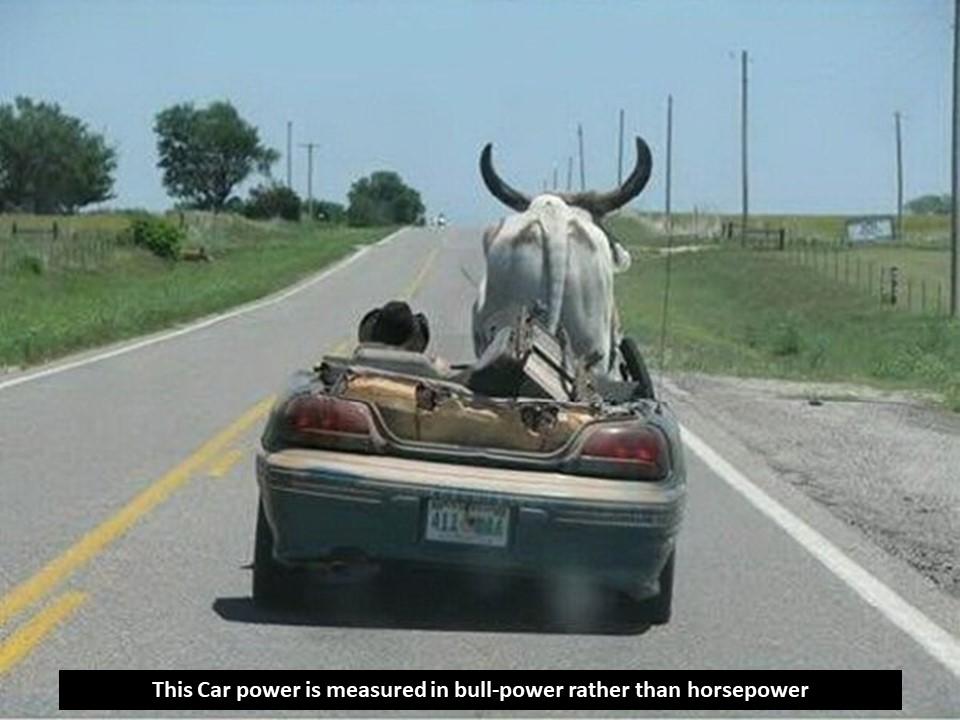 Car Jokes4.JPG