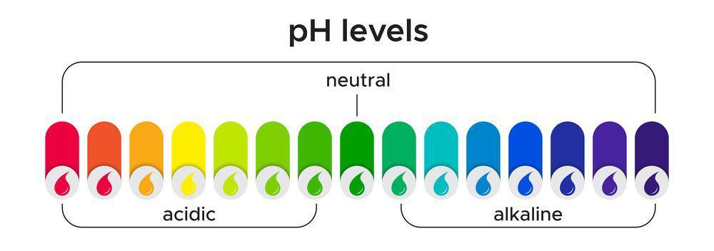 ph-levels-1-e1581985555204.jpg