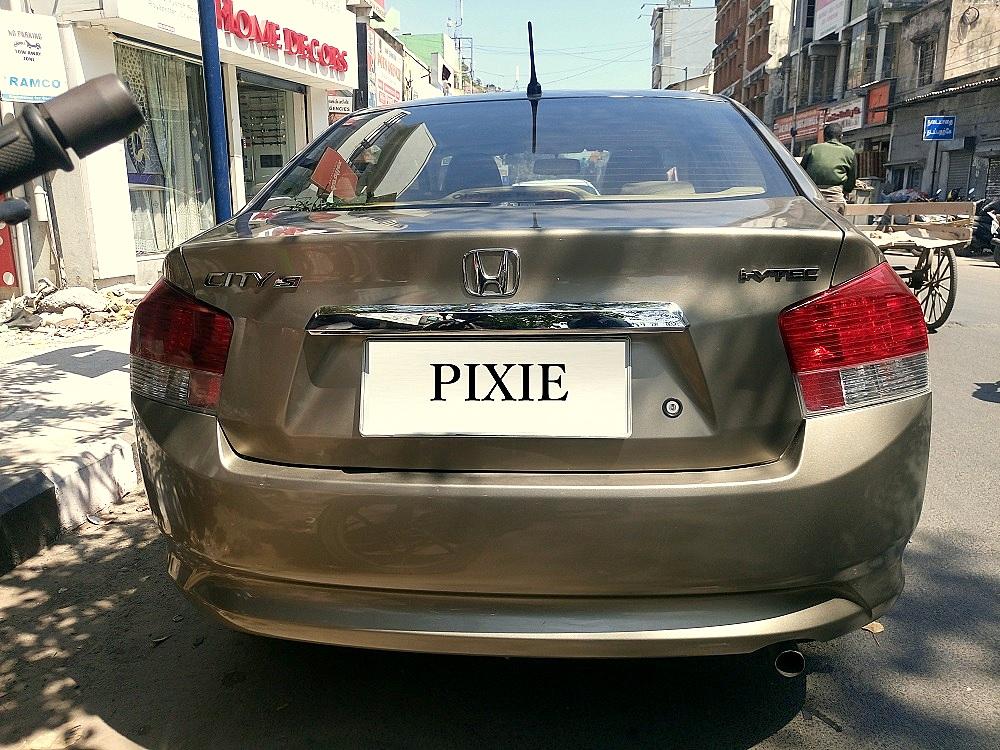pixie back.jpg