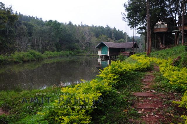 Travelogue: Bangalore -> BR Hills -> Munnar -> KodaiKanal -> Bangalore